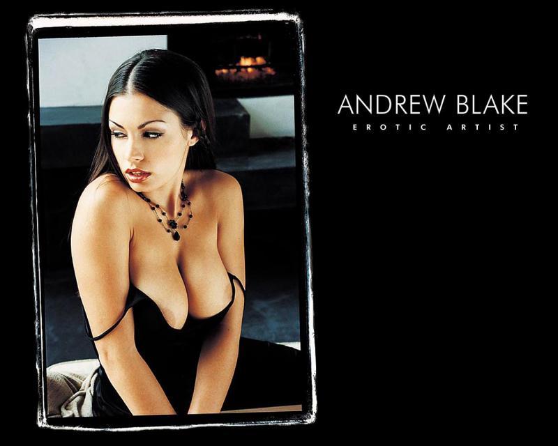 Andrew Blake (1989-2011) - коллекция ДВД-рипов максимального качества в MKV-формате (Artcore, Vignettes, Fetish, Straight, Lesbians)
