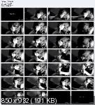 Искусство минета / The Art Of Blowjob / DVDRip / 2007-2009