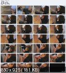 ��������� ������ / The Art Of Blowjob / DVDRip / 2007-2009