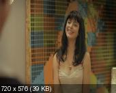 Как заняться любовью с женщиной / How to Make Love to a Woman (2010) BDRip 720p+HDRip(1400Mb+700Mb)+DVD9+DVD5