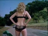 Ева и мастер на все руки / Eve and the Handyman (1961) DVDRip