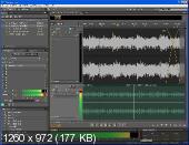 Adobe Audition CS5.5 v4.0 Multilingual (2011)
