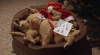 Три рождественские сказки / 3 Holiday Tails (2011) HDRip