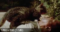 Лунатики / Sleepwalkers (1992) BD Remux + BDRip 720p