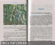 http://i26.fastpic.ru/thumb/2012/1130/15/0d51a82b4ccd7d32c95ac8cfe72cab15.jpeg