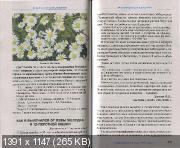 http://i26.fastpic.ru/thumb/2012/1130/de/2363d56594ef391c8f7198fe0b5069de.jpeg